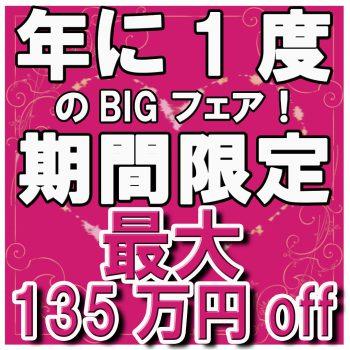 ★★年に1度のBIGフェア★★期間限定!最大135万円OFF!!